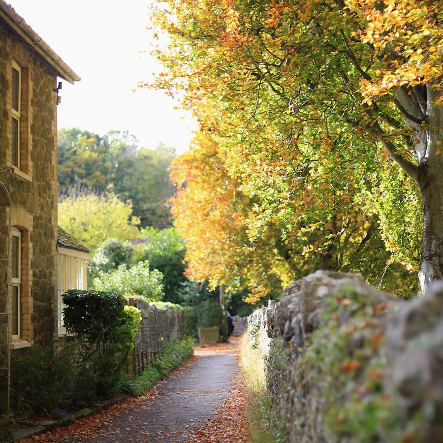 Lustleigh Cottage, Lustleigh, Devon